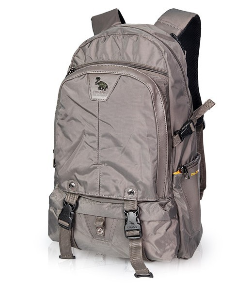 420D Polyster New design Gray  backpack