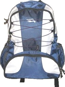 Blue and White Quality polyster backpack
