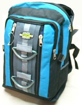 Popular blue school backpack