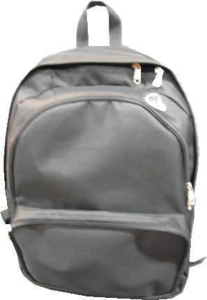 silvery Simple backpack