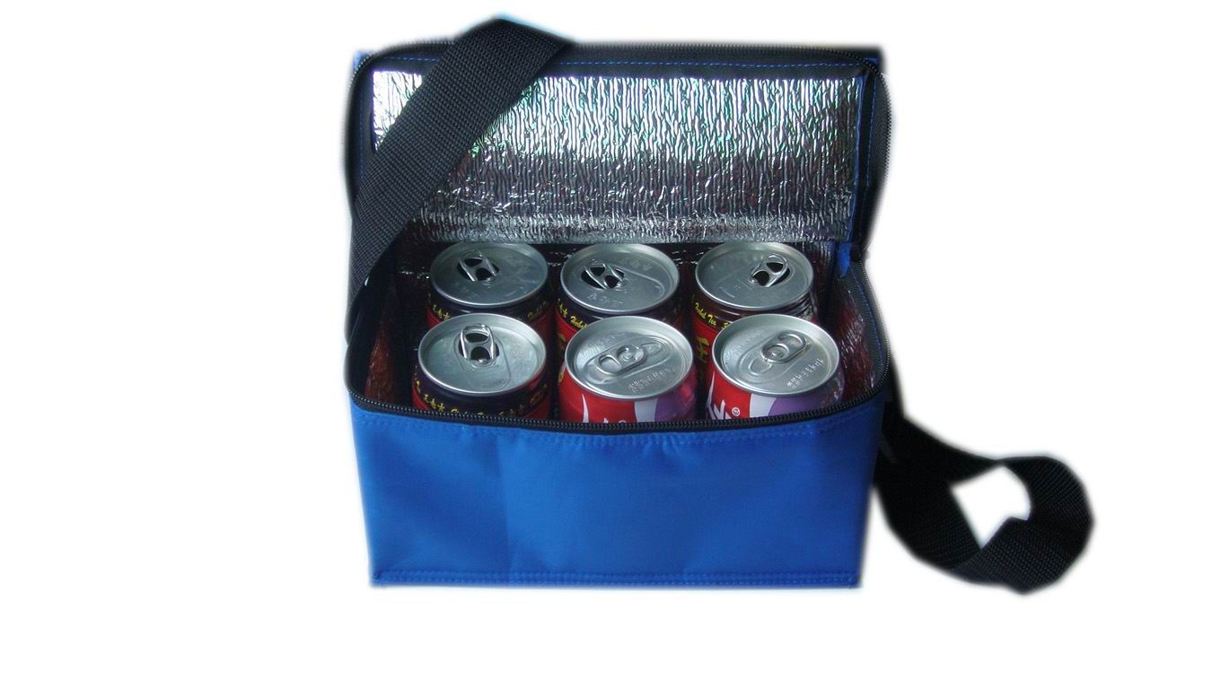6Cans cooler bag With Two Strap