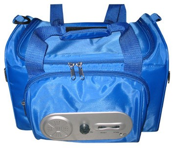 Cool lunch cooler bag  With Radio