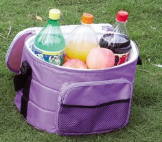 disposable cooler bag with long strap