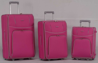 EVA Pink Luggage bag
