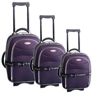Purple Polyster Luggage bag